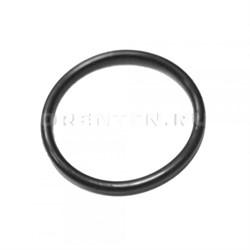 Уплотнительная прокладка (кольцо) - фото 5733